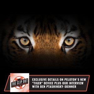 TCO 209 | Internet Personality